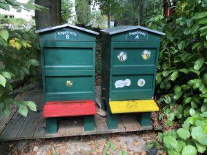 Bienenstöcke